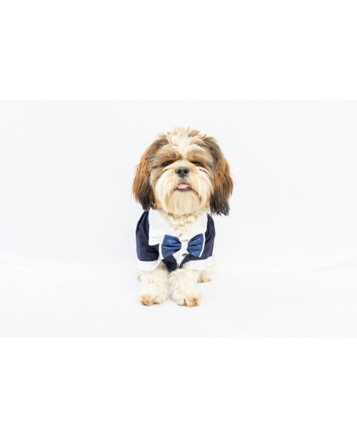 Tuxedo Shirt for Dogs and Cats